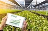 landbouw.jpg